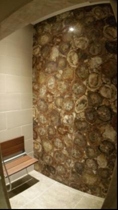 Petrified Wood Stone Wall Slabs - Slab Sale