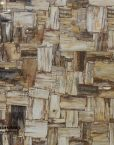 Australian-Petrified-Wood-Stone-retro-1