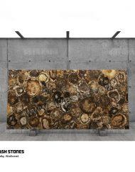 Australian-Petrified-Wood-Stone-round-1-10X5