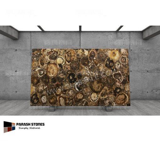 Australian-Petrified-Wood-Stone-round-1-10X6