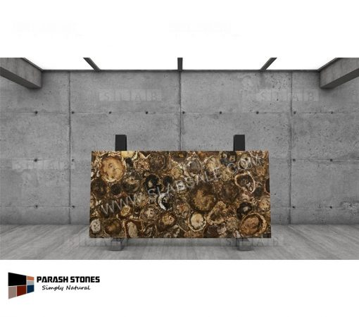Australian-Petrified-Wood-Stone-round-1-8X4