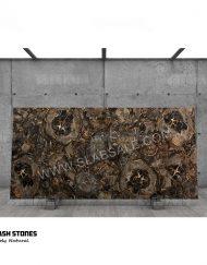 Black-big-round-petrified-wood-stone-10X5