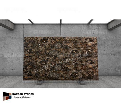 Black-big-round-petrified-wood-stone-10X6