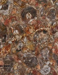 arizona-red-brown-petrified-wood