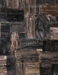 black-petrified-wood-stone-retro